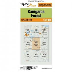 Topo50 BF38 Kaingaroa Forest