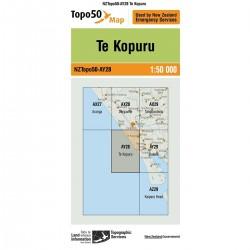 Topo50 AY28 Te Kopuru