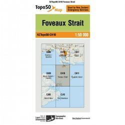 Topo50 CH10 Foveaux Strait