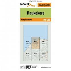 Topo50 BD43 Raukokore
