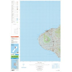 Topo250-08 New Plymouth Map