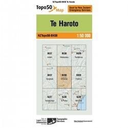 Topo50 BH38 Te Haroto